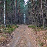 Путь в никуда :: Юлия М