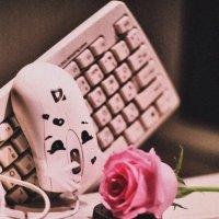 Любовь и нежность есть не только в людях! :: Анна Кузнецова