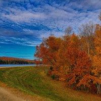 На резервуаре осень :: Яков Геллер