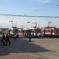 """Конечная станция трамвая """"Купчино"""" (28.05.2009) :: Владимир Варивода"""
