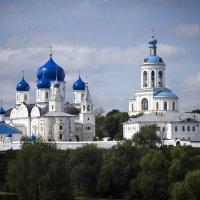 Свято-Боголюбский монастырь :: Елена Панькина