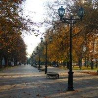 в парке :: Екатерина Токарская