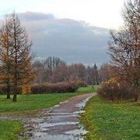 Осень, осень... :: Олег Попков