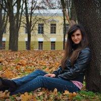 В осеннем парке :: Дмитрий Васильев