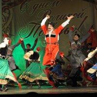 Кубанский казачий хор :: Андрей Фиронов