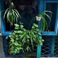 Балкон :: Виктория Ивасенко