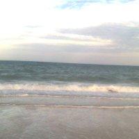 Азовское море :: Дарья Неживая