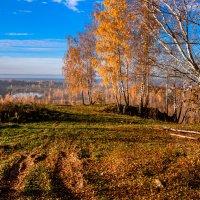 Золотая осень :: Анатолий 71