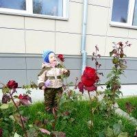 Богдан и розы. :: Наталья Белякова