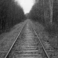 и снова дорога :: евгений Смоленцев