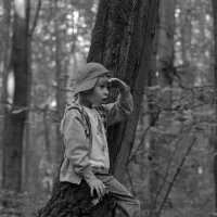 Где же белки в этом лесу... :: Ирина Негара