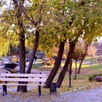 Осенний парк :: Дарья Довгопольская