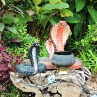 Бангкок, чаша для сбора пожертвований в монастыре :: Владимир Шибинский