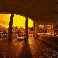 Парковая колоннада... :: АндрЭо ПапандрЭо
