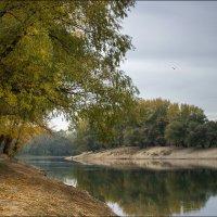 Осенняя :: Сергей Симоненко