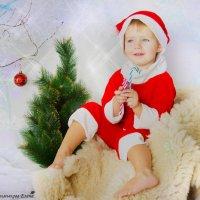 Деда Мороза ждали? :: Елена Кудинова