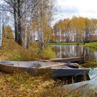 Осень началась... :: Евгений Barash