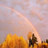 Осенняя радуга. :: игорь шемелов