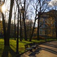 Солнечный день :: Irina Sergeeva