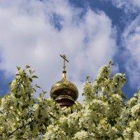 Весна в монастыре :: Александр Артюхов