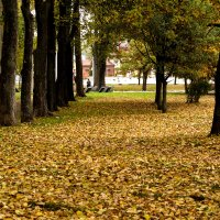 Просто осень :: Юрий Данилов