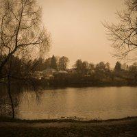 Поздняя осень :: Наталья Елгина