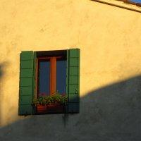 Солнечный цвет :: Юлия Игошина