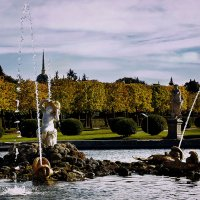 Золотая осень :: Мари Воронина (Турик)