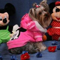 Моя мышка :: Елена Багрий
