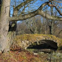 Старинный мостик. :: Виктор