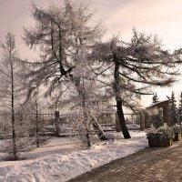Прошлогодняя зима... :: Nonna