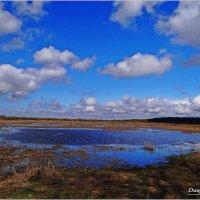 Весенний разлив. :: Антонина Гугаева