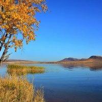 Осень у озера. :: Наталья Юрова
