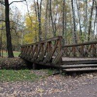 мост в парке :: Sergey Ganja