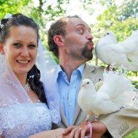 Свадьба :: Юлия Сорокина