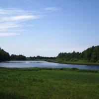 Сине-зелёное лето :: Юлия Игошина