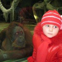 В зоопарке :: Полина Бесчастнова