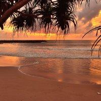 Тропический закат :: Владимир Белозёров