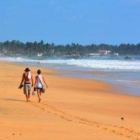 Прогулка по пляжу :: Владимир Белозёров