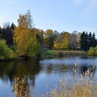 осенний пейзаж :: Irina Sergeeva