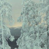 Зима :: Elena Putina