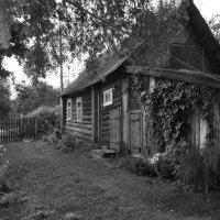 Домик в деревне :: Яна Шмелёва