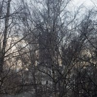 Поздняя осень. :: Яков Реймер