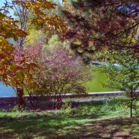 Осень... октябрь 20-го дня... :: Вахтанг Хантадзе