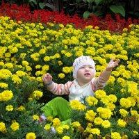 малышка :: Анастасия Пушкарева