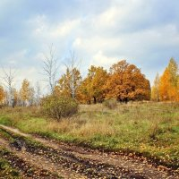В уходящую осень... :: Svetlana Sneg