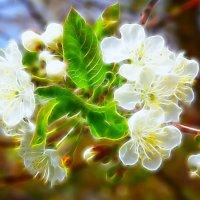 Хочется весны.... :: Марина Назарова