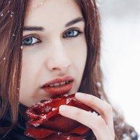 Winter rose.. :: Виктор Высоцкий