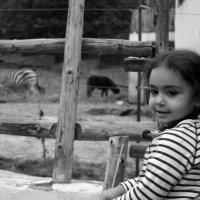v zooparke :: Edgar