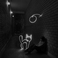 Человек и кошка :: Дмитрий Тилинин